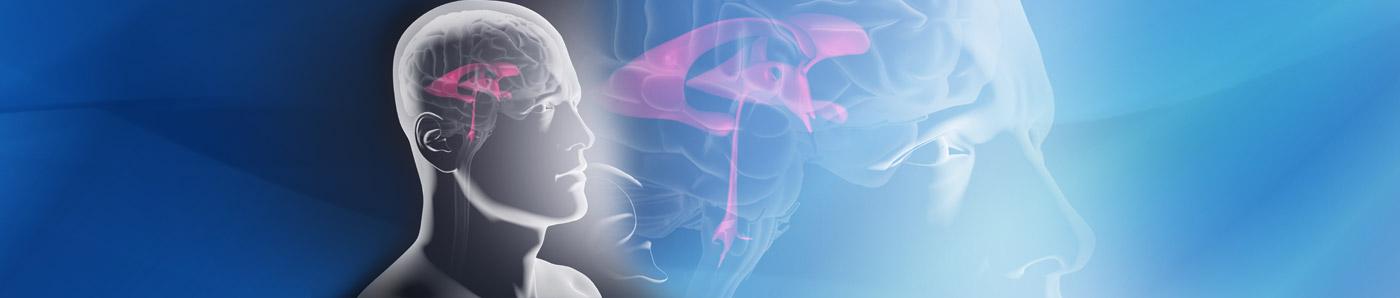 Sistemi di drenaggio esterno Neuromedex<sup>®</sup>